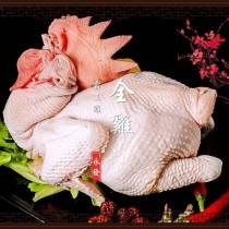 永發霸王 - 全雞未切 1.8kg以上